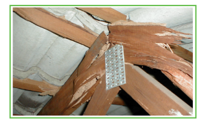 Termite-Damage-To-Roof